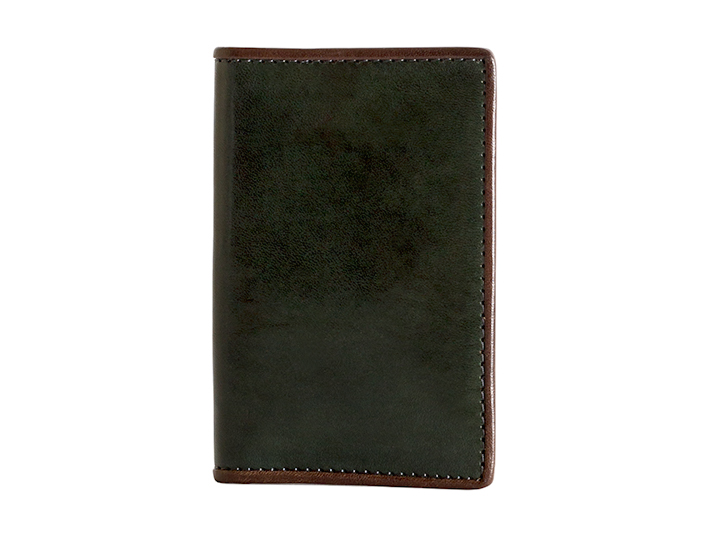 Calling Card Case-142 Green/Taupe