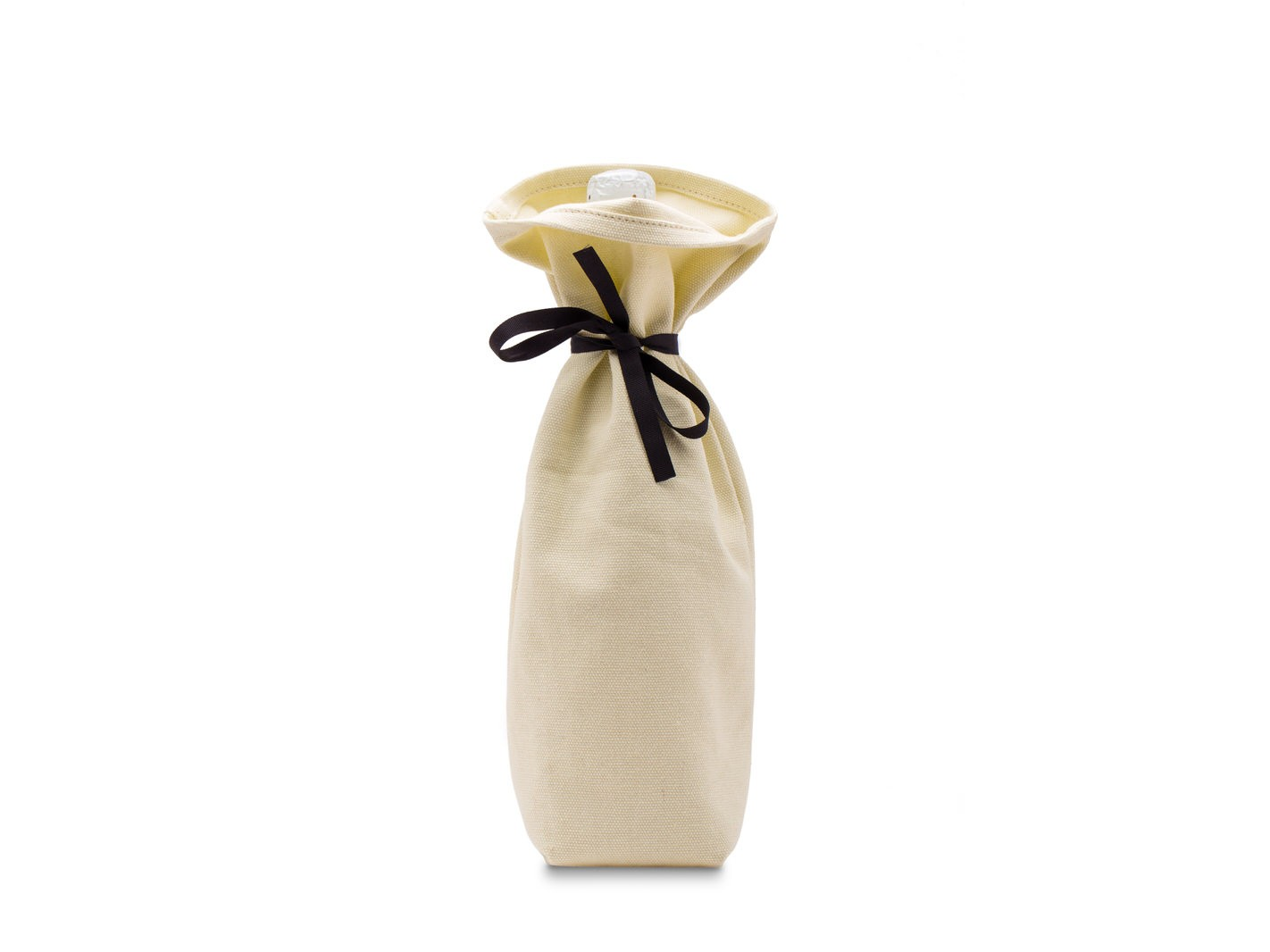 Hostess Gift Wine Bag