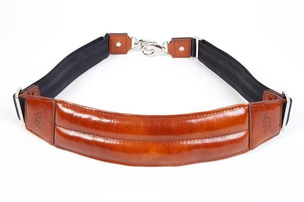 Shoulder Strap (817, 833)